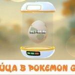 Яйца покемонов в игре Pokemon Go
