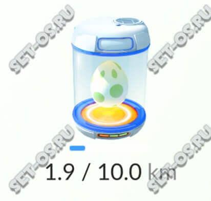 как вырастить яйцо в покемонах