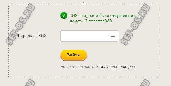 введите пароль из sms