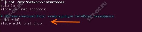 включение dhcp на сетевом адаптере linux ubuntu